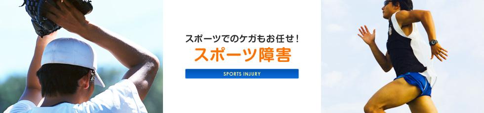 sports_03